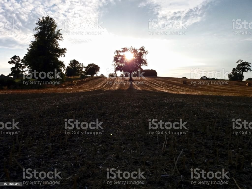 Harvest Home stock photo