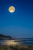 Halloween,holiday,castle,full moon,night,landscape,bat,illustration,background,design