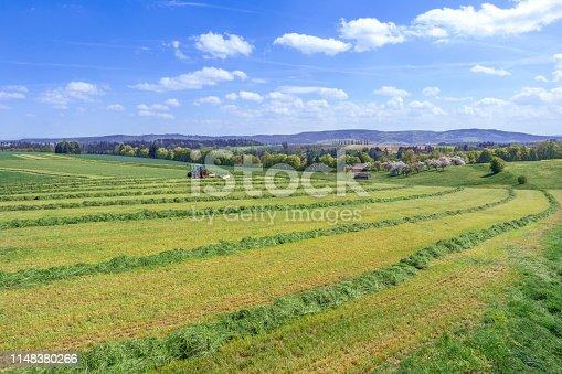 Harvest of green fodder in rural landscape in spring