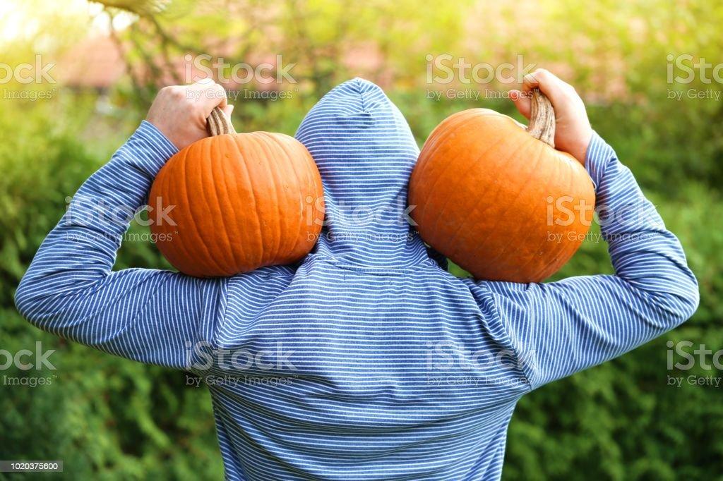 Récolte de Pumpkins.A homme avec grande citrouille orange sur son épaule sur un fond vert flou. Jour de Thanksgiving. Halloween.Autumn temps - Photo