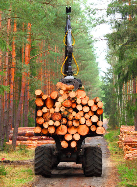harvest of timber. - logging equipment stock photos and pictures
