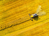 Aerial view of combine harvester. Harvest of wheat field. Industrial footage on agricultural theme. Biofuel production from above. Agriculture and environment in European Union.