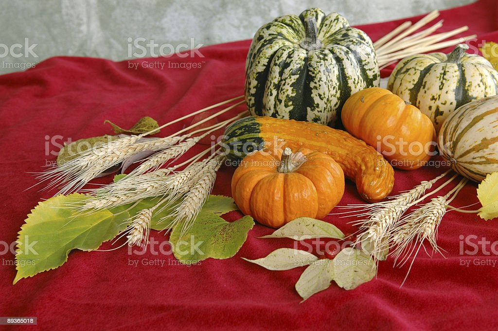 Harvest on Red Background royalty-free stock photo
