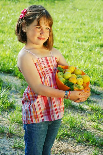 """""""harvest"""" - pflaumen jeans stock-fotos und bilder"""