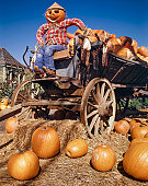 istock harvest pumpkin man farmer and farm wagon 155383312