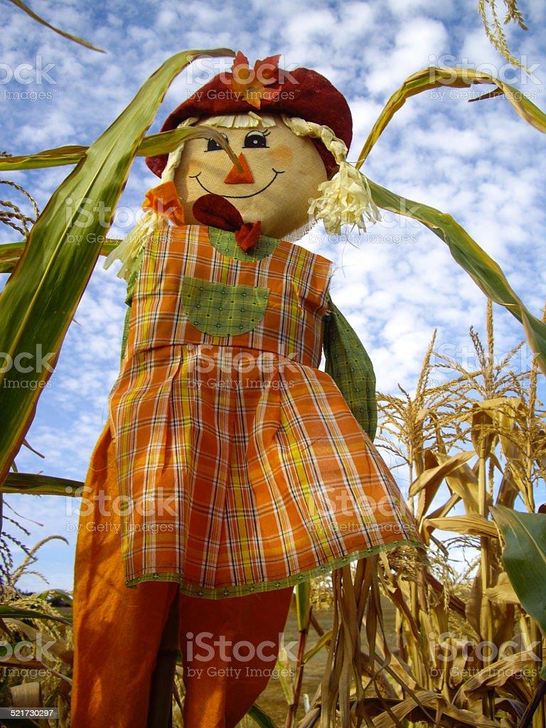 Harvest Scarecrow stock photo