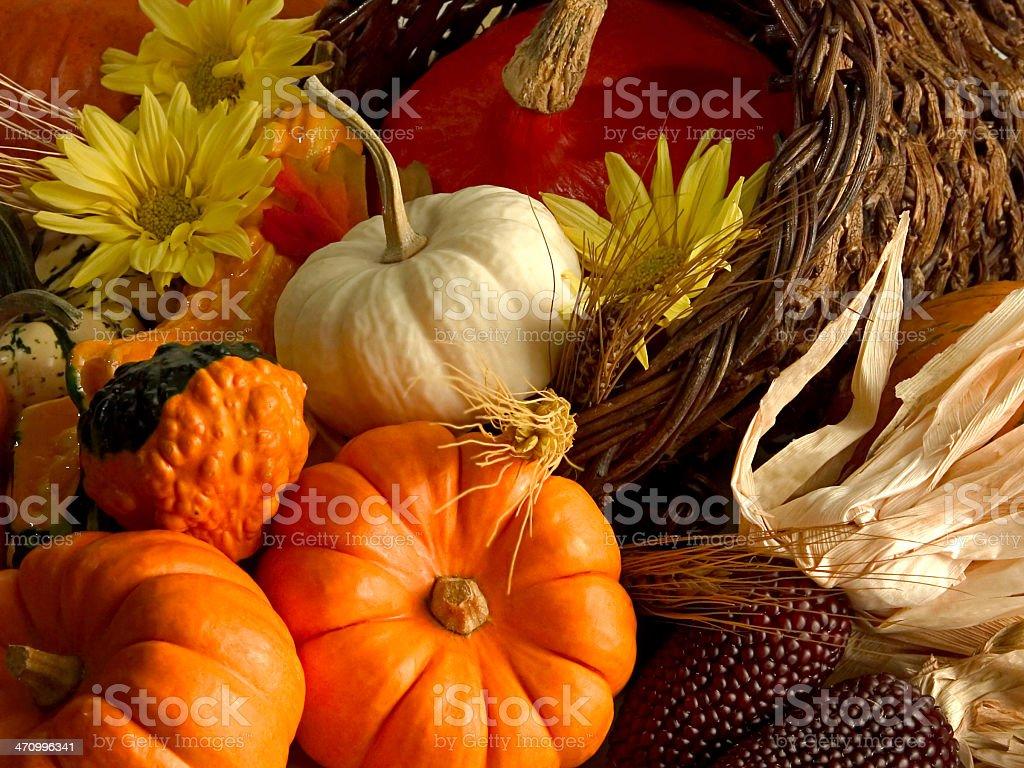 Harvest season cornucopia with pumpkins, corn and flowers royalty-free stock photo
