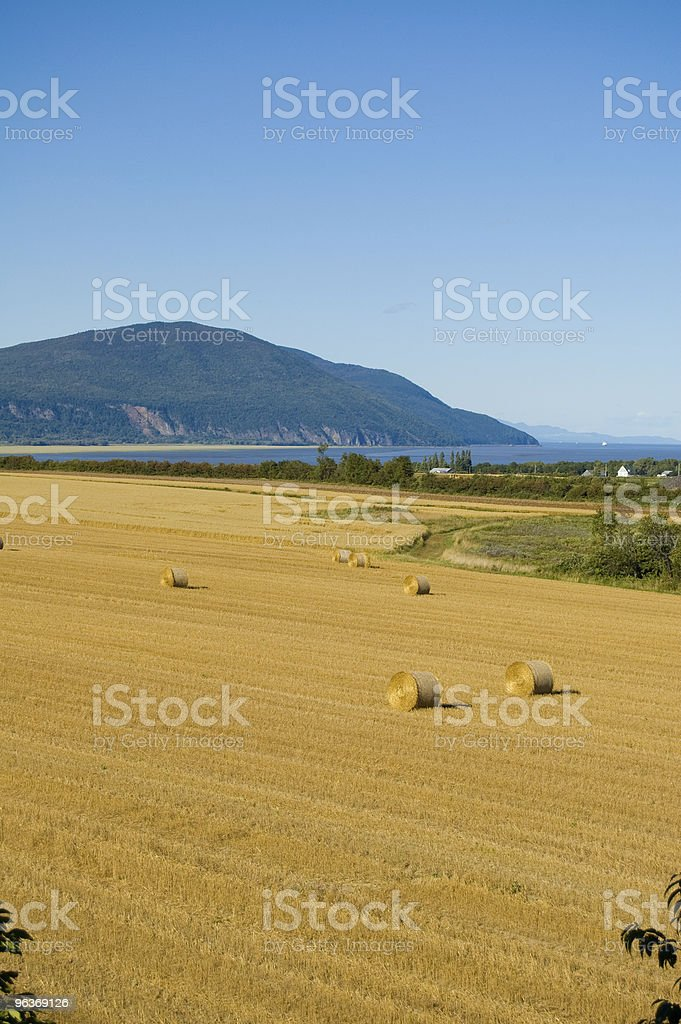 harvest time on orlean island royalty-free stock photo