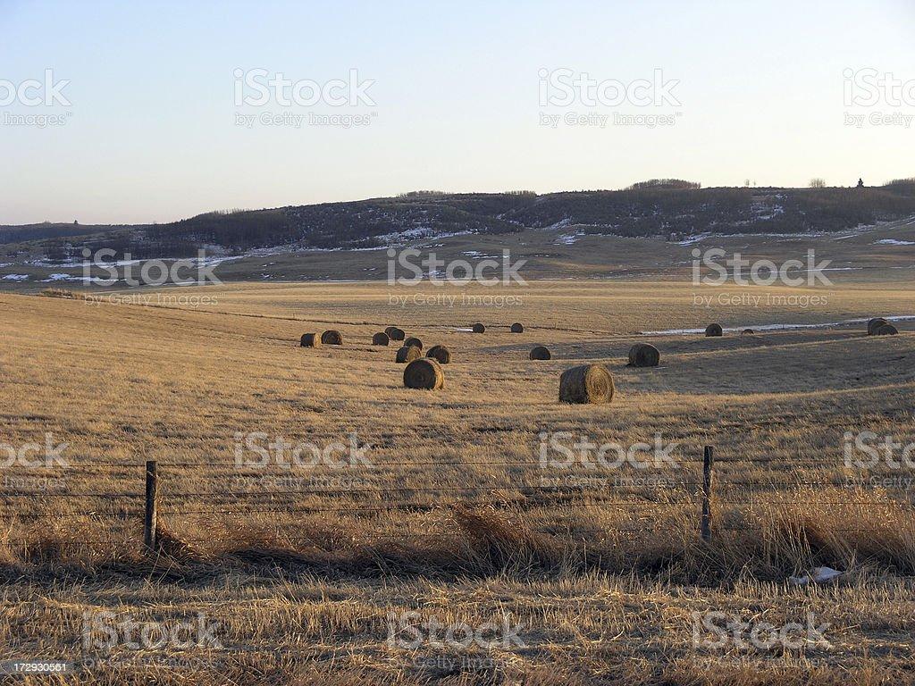 Harvest Valley stock photo