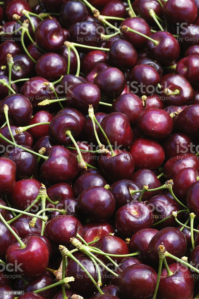 Harvested and Boxed Cherries stock photo