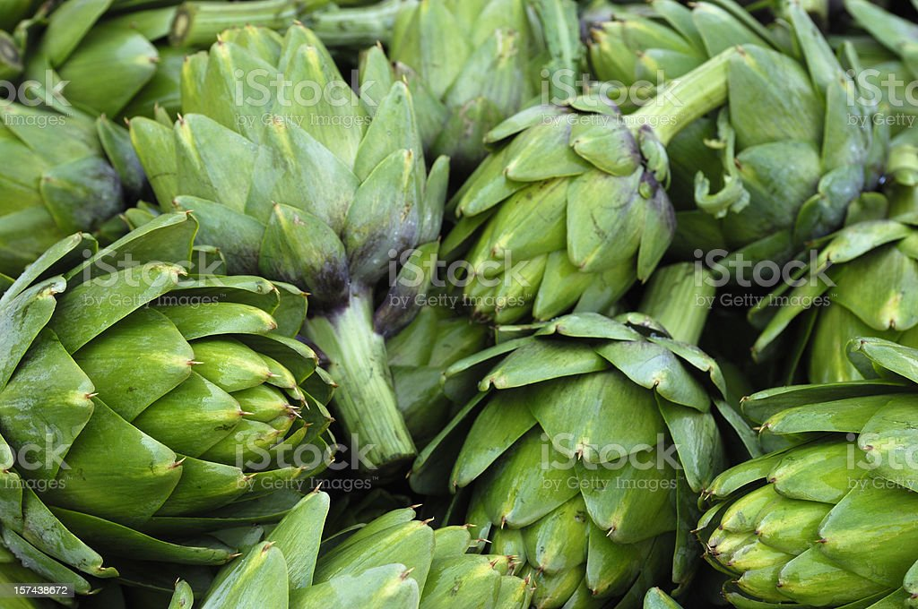Harvested Artichokes in Wooden Bin royalty-free stock photo