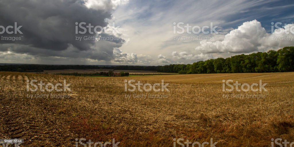 Harvested field in summer under cloudy sky stock photo