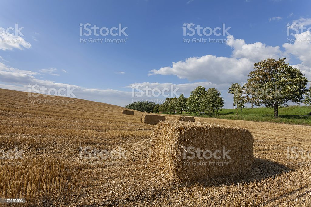 Harvested haystack in a field. royalty-free stock photo