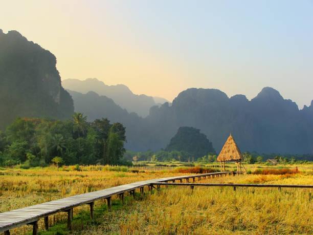geernteten reisfeld mit felsformationen in vang vieng, laos - vang vieng stock-fotos und bilder