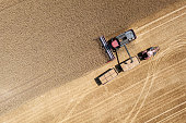 Thuringia, Germany: A harvester harvests wheat on a field, photographed directly from above.
