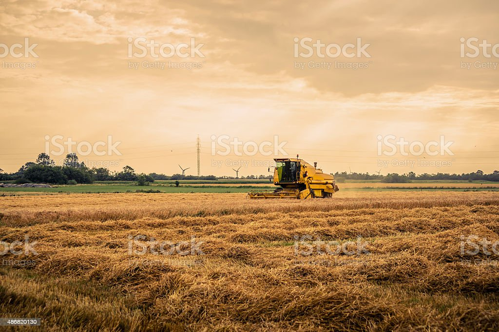 Harvester on a field in the summertime stock photo