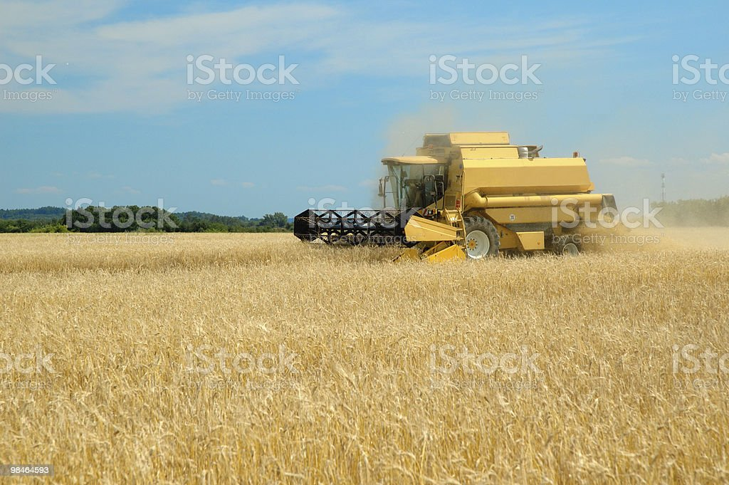 Harvester working royalty-free stock photo