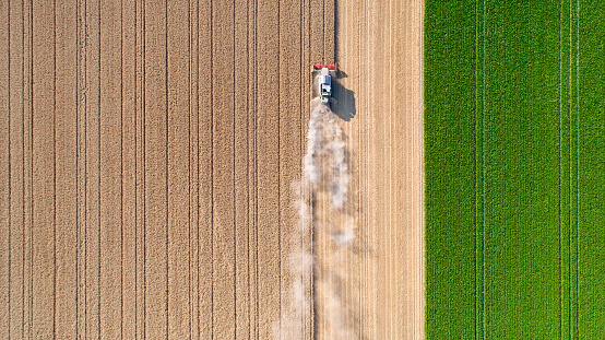 Harvesting a wheat field, dust clouds - aerial view