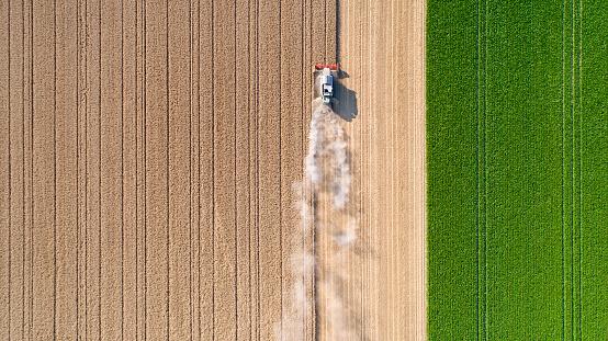 Bir Buğday Alan Hasat Toz Bulutları Stok Fotoğraflar & Almanya'nin Daha Fazla Resimleri