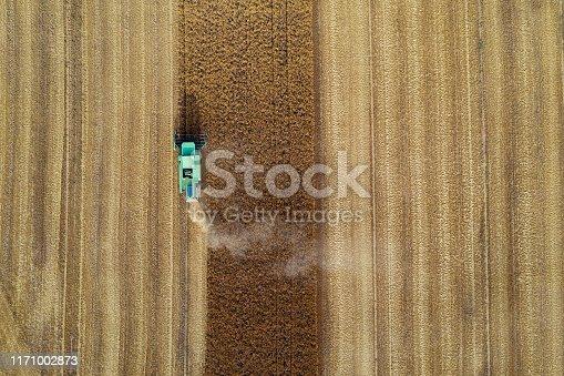 Combine harvester harvesting wheat crop, bird's eye view.