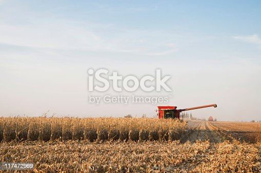 Harvesting Corn in the Midwest United States.