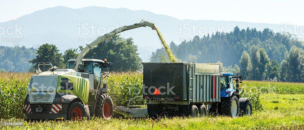 Harvesting in field stock photo