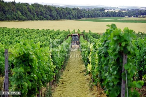 171320236 istock photo harvesting machinery with a driver in a farmers vineyard in rhineland palatinate Germany in summer. Part of a wine making process. Tractor with trimming equipment cutting tops of vines. 1174622200