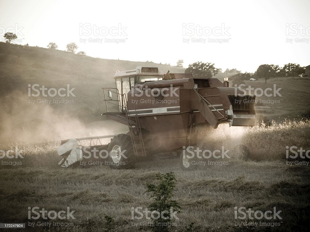 Harvesting..... royalty-free stock photo