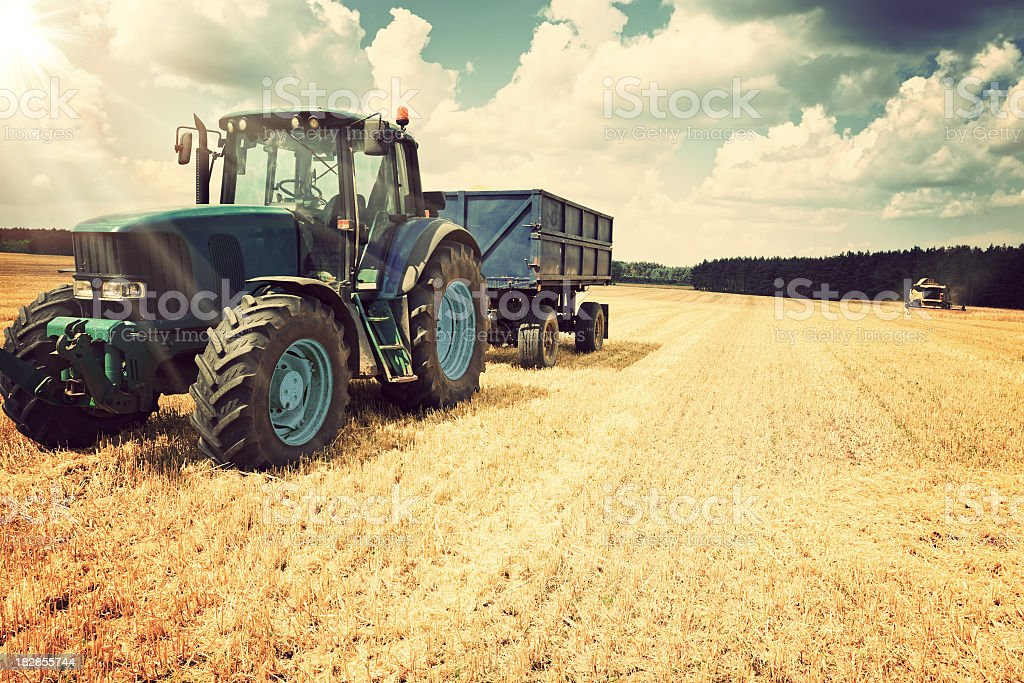 Harvesting stock photo
