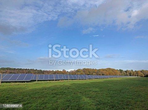 istock Harvesting sunshine at onset of winter in Dorset during November 1285996914