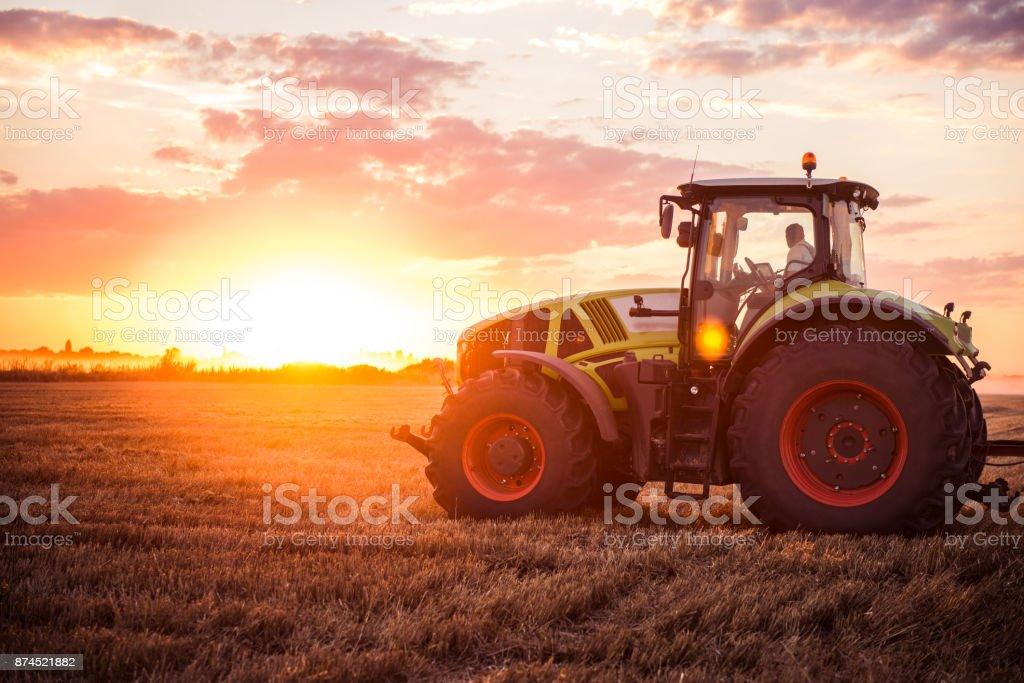 Harvesting the wheat stock photo