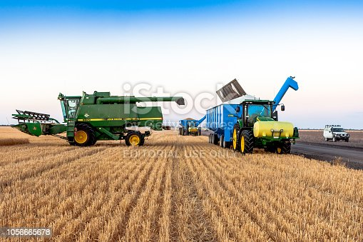 Moree, Australia - November 04, 2012: Wheat harvest in Moree, Australia. Moree is a major agricultural area in northern New South Wales, Australia.