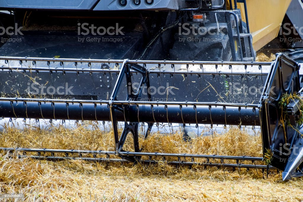 Harvesting wheat with a combine harvester. stock photo
