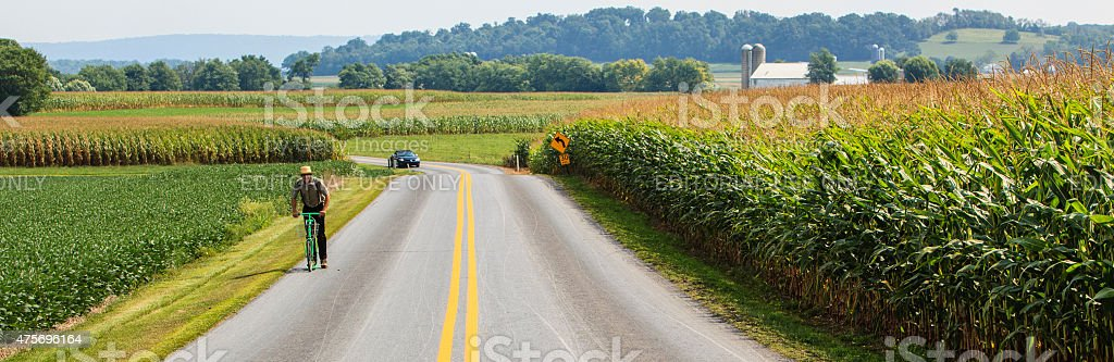 Harvesting's time. Amish men, Pennsylvania Dutch Country, Lancaster county stock photo