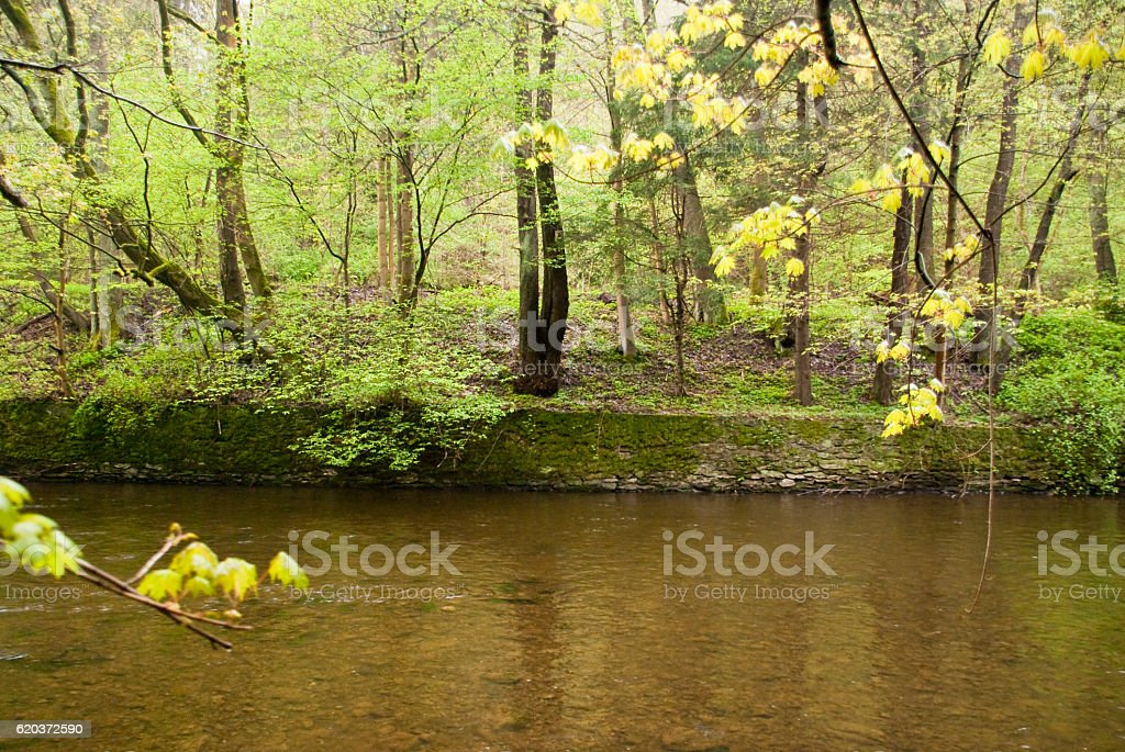 Harz Mountains, Germany foto de stock royalty-free