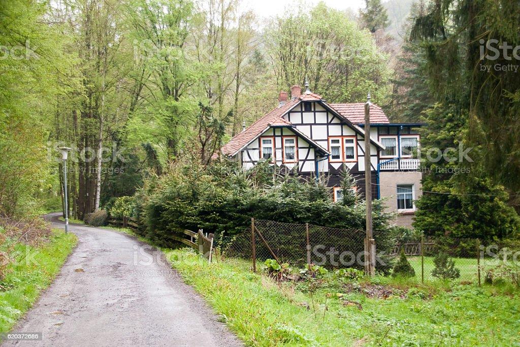 Harz Mountains, Germany zbiór zdjęć royalty-free
