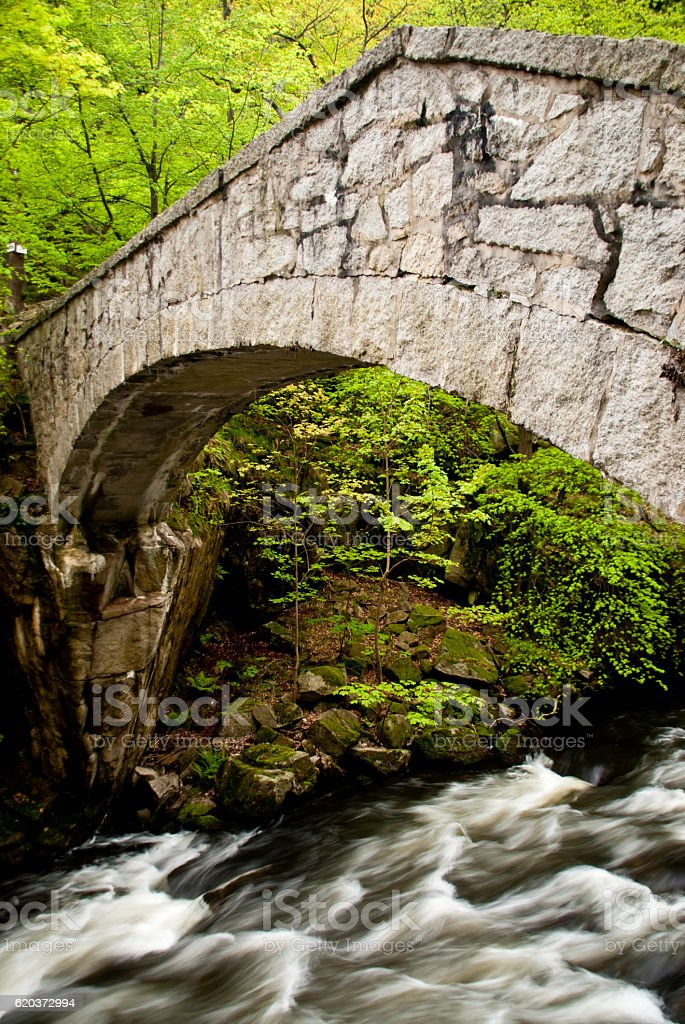 Harz Mountains, Germany foto de stock royalty-free