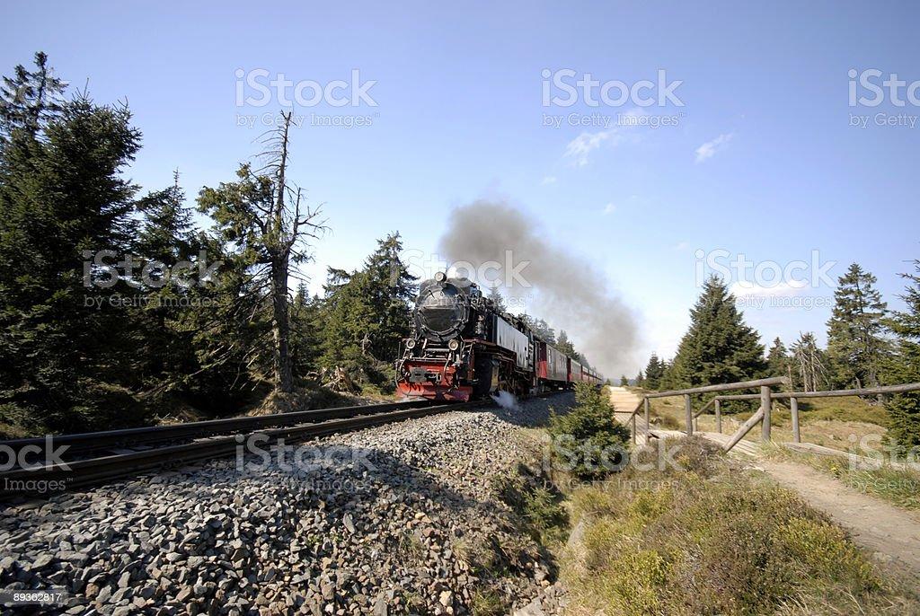 Ferrocarriles Harz estrecho foto de stock libre de derechos