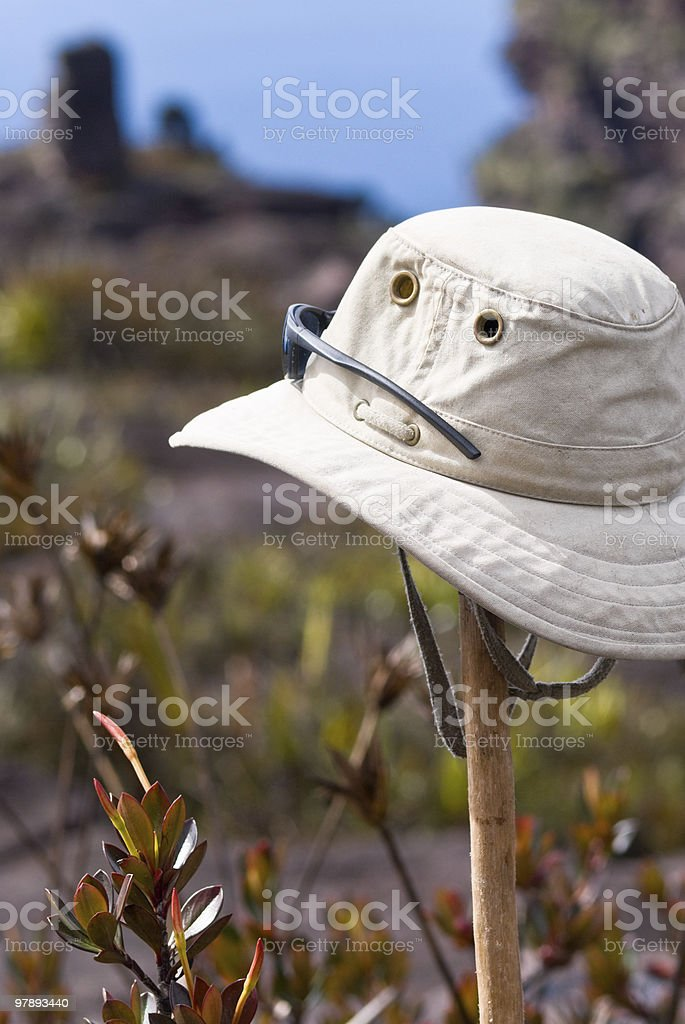 Hat and Sunglasses royalty-free stock photo