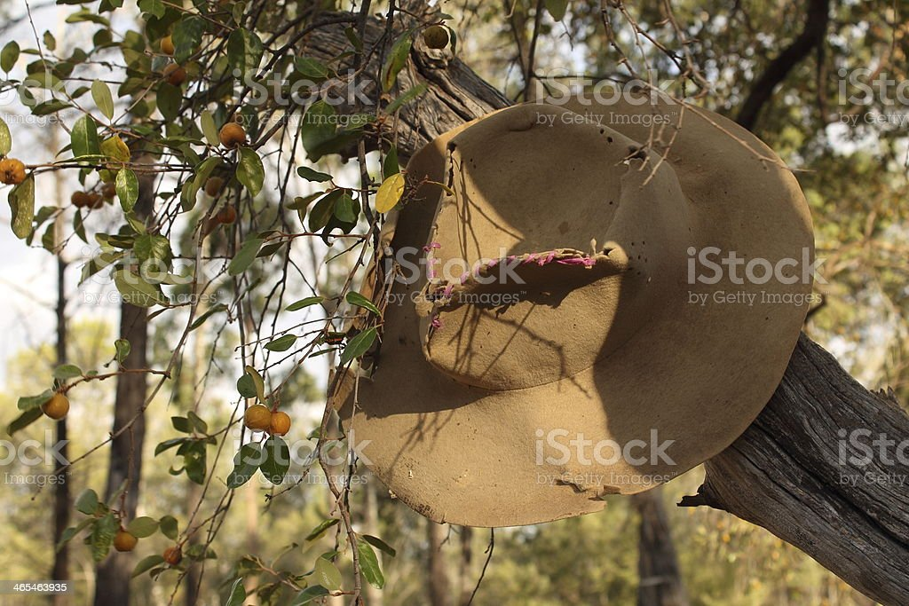 Hat on a tree stock photo