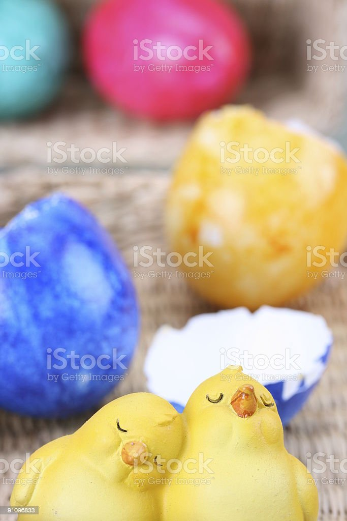 Hatched Biddies royalty-free stock photo