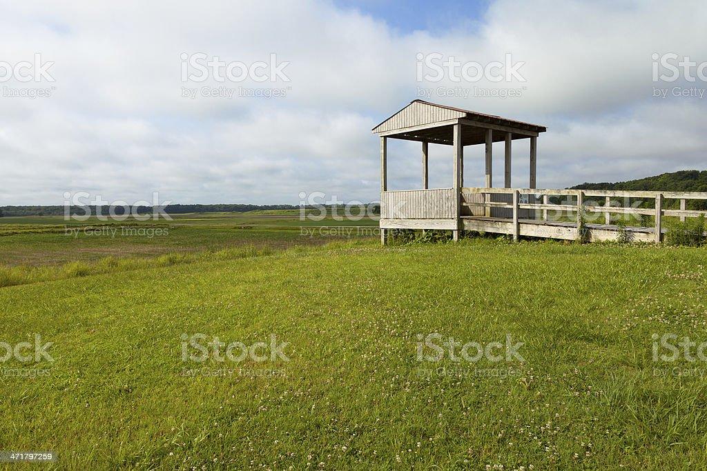 Hatchie Wildlife Refuge stock photo
