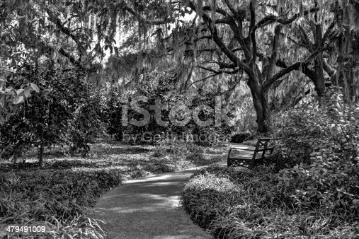 450754061 istock photo Haunted Garden 479491009