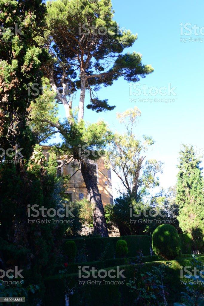 Hausfassaden / Stadtansichten auf Mallorca - Valldemosa - Spanien royalty-free stock photo