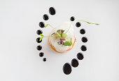 Molecular high end gastronomy kitchen. HIghend culinary