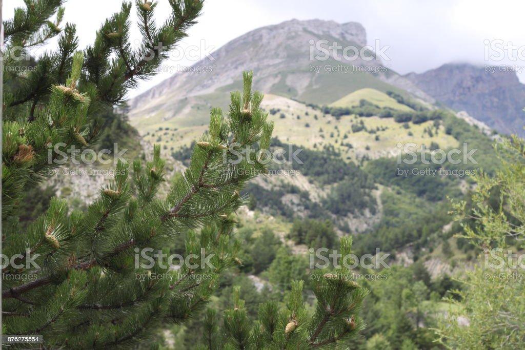 Hautes Alpes - Photo