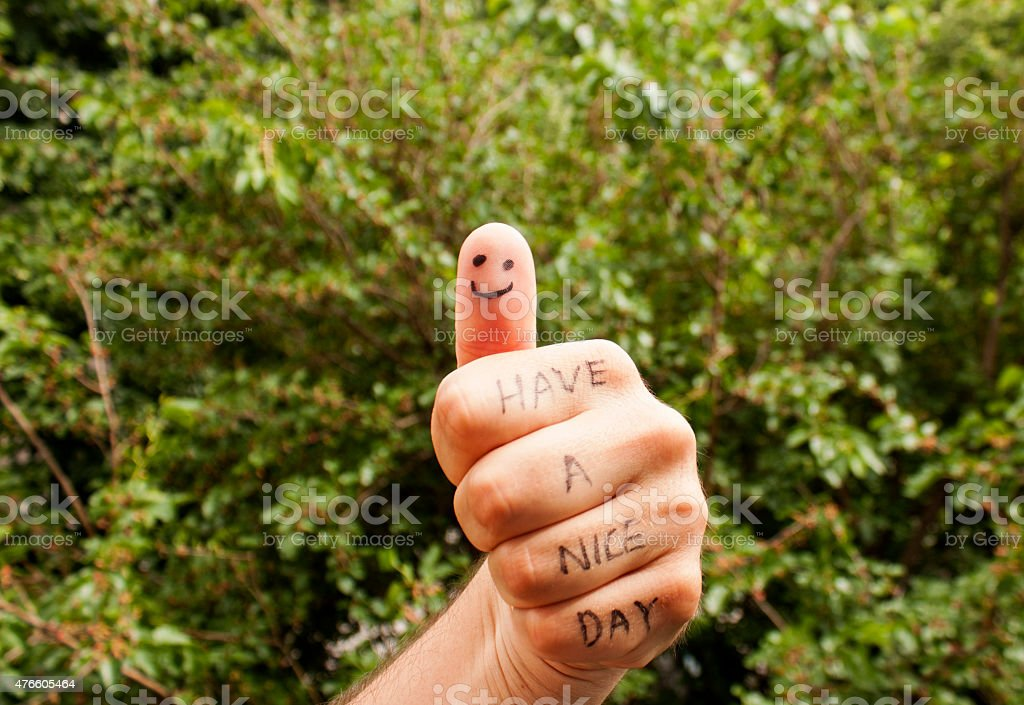 Have a nice day on green background stock photo