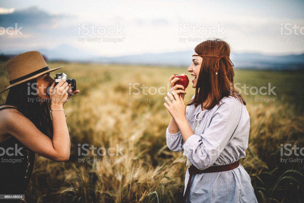 Having fun in the wheat field zbiór zdjęć royalty-free