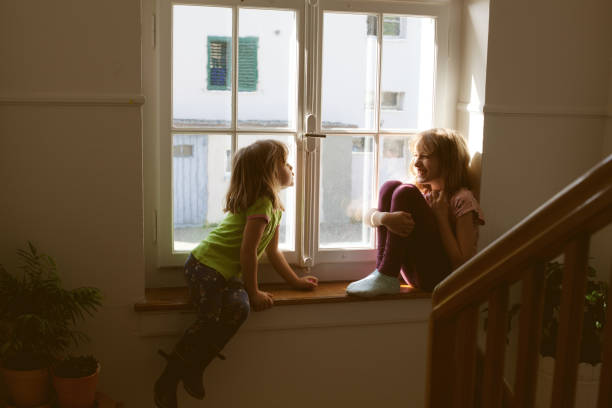 having fun on window sill - tamara dragovic stock photos and pictures