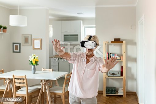 1053414472 istock photo Having some virtual fun 1175963905
